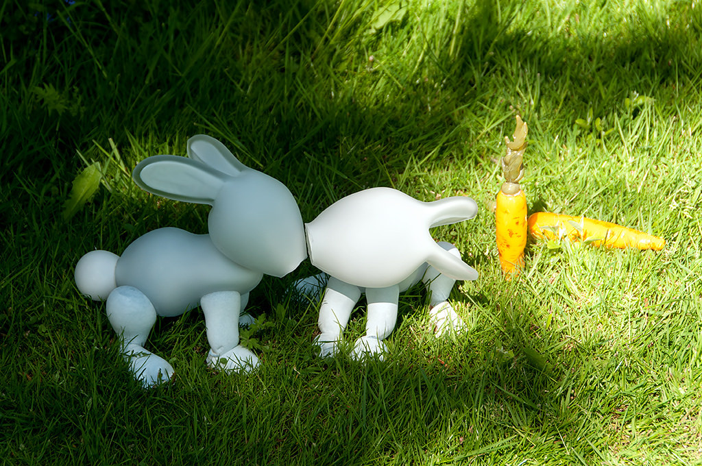 konijnen kus josja caecilia schepman